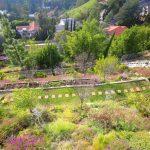 terraced hillside 5184x3456